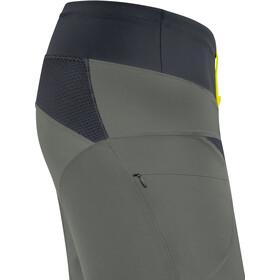 GORE WEAR C5 Trail Light Shorts Men castor grey/black